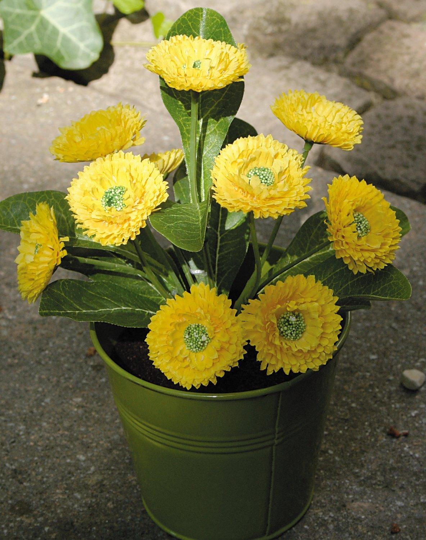 Künstliche Bellis, getopft, 22 cm, gelb