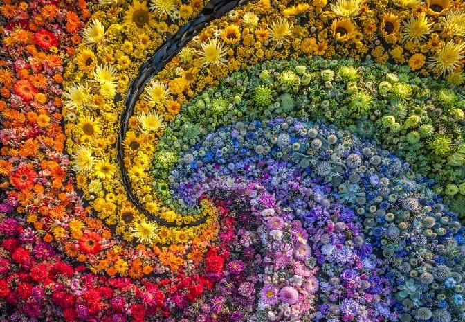 Kuenstliche Blumen bei H.Andreas kaufen