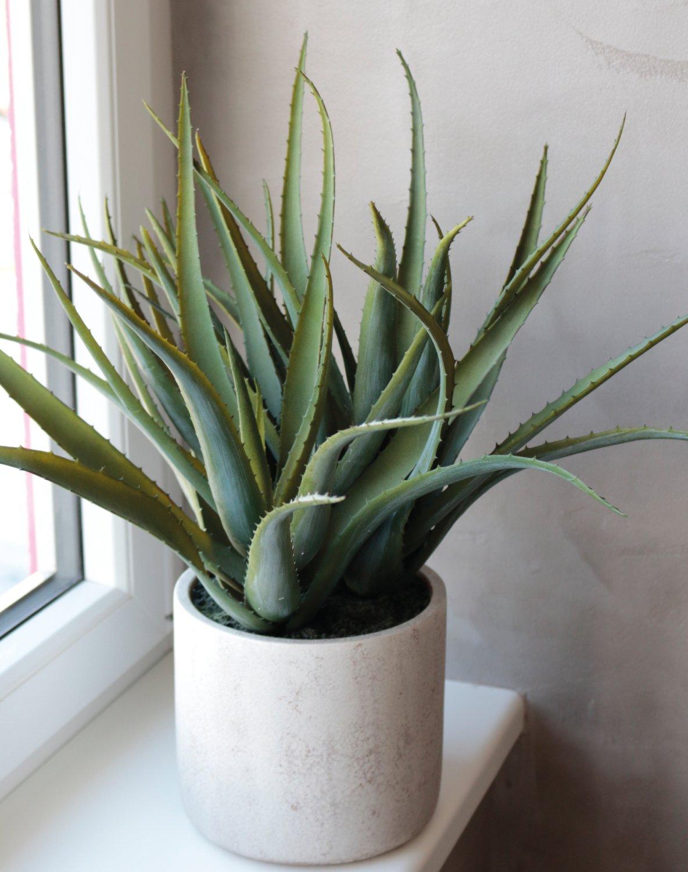 Künstliche Aloe, getopft, 53 cm, grün