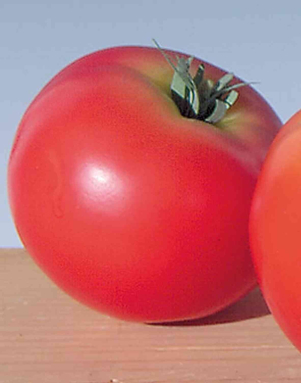 Künstliche Tomate, 6 cm, rot