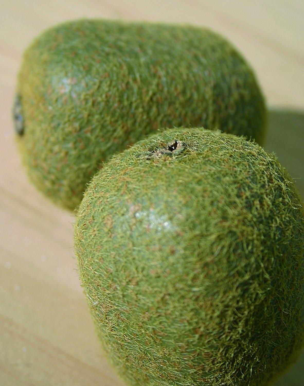 Künstliche Kiwi, 7 cm, braun