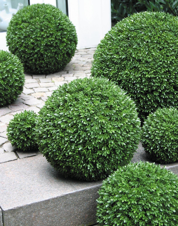 Künstliche Buchsbaum Kugel aus Kunststoff, Ø 15 cm, grün
