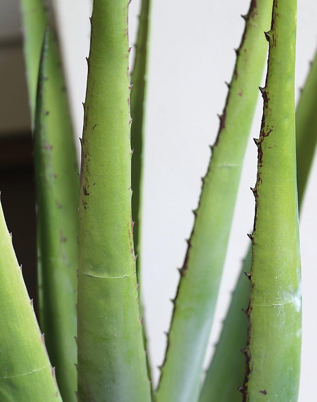 Künstliche Aloe, getopft, 58 cm, grün