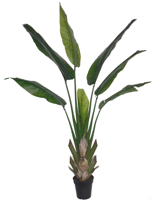 Künstliche Heliconie, getopft, 210 cm, grün