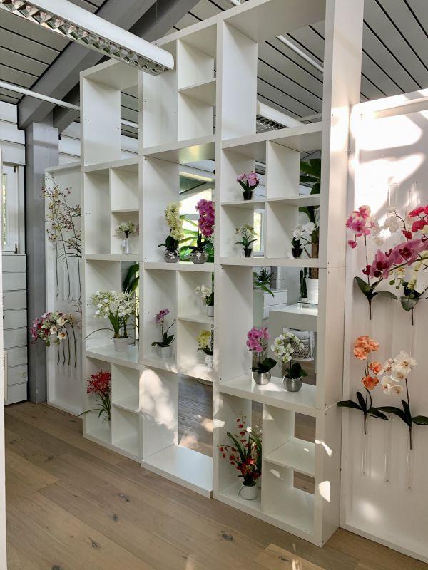 Kuenstliche Orchideen im H.Andreas Showroom entdecken