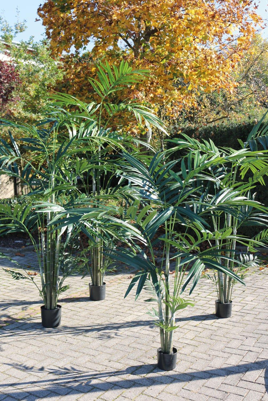 Künstliche Kentia-Palme, getopft, 240 cm, grün