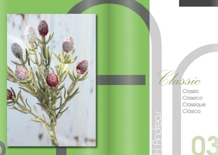Kunstpflanzen Katalog 2020 - Classic von H.Andreas