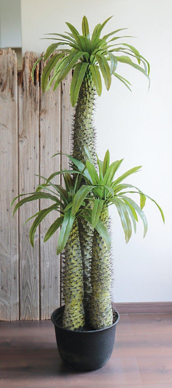 Künstliche Madagaskarpalme, getopft, 3-fach, 170 cm, grün