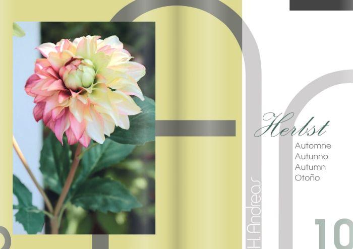 Kunstpflanzen Katalog 2020 - Herbst von H.Andreas