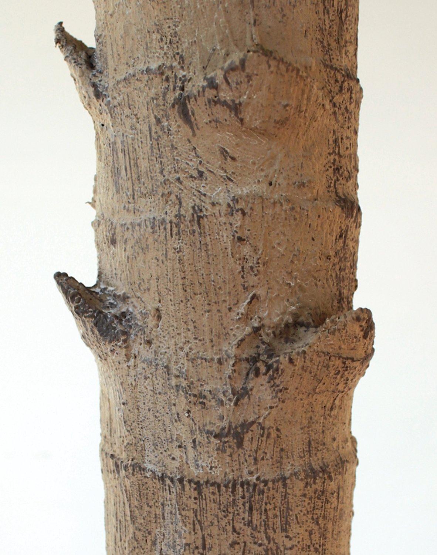 Künstliche Phönixpalme, getopft, 162 cm, grün