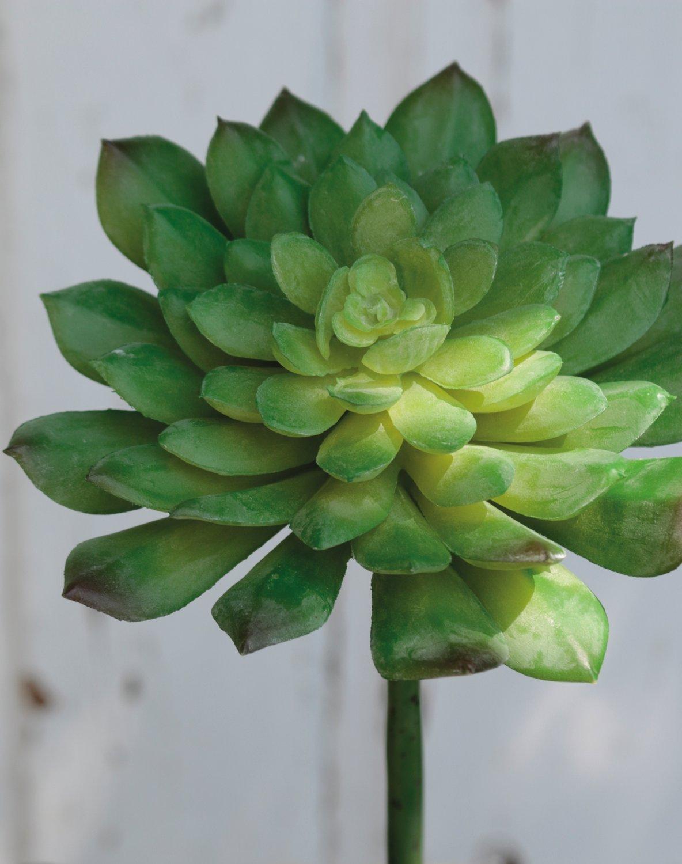 Künstliche Echeveria auf Steckstab, 16 cm, grün