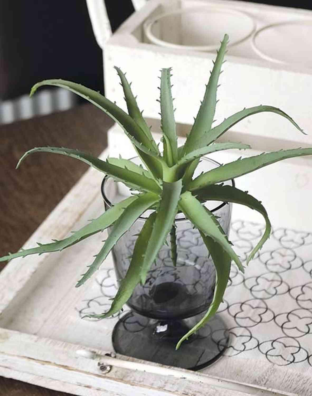 Künstliche Aloe Vera auf Steckstab, 18 cm, grün