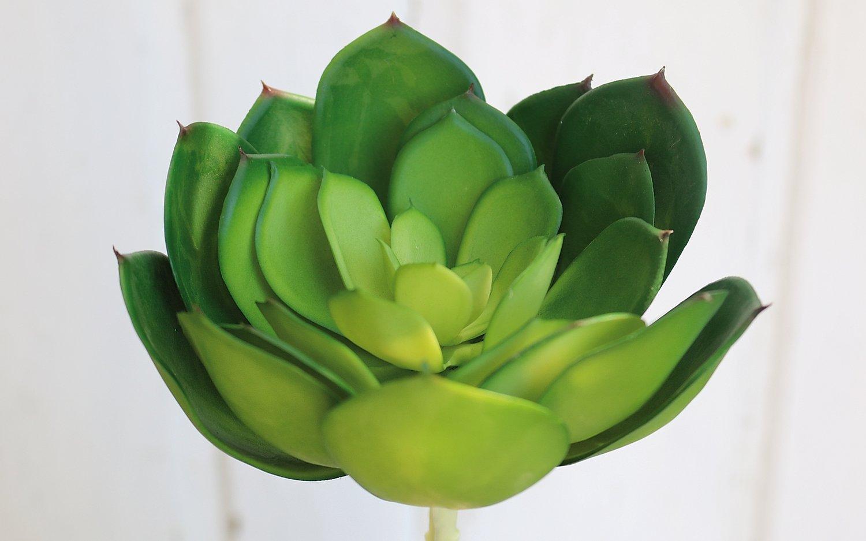 Künstliche Echeveria auf Steckstab, 14 cm, Ø 16 cm, grün