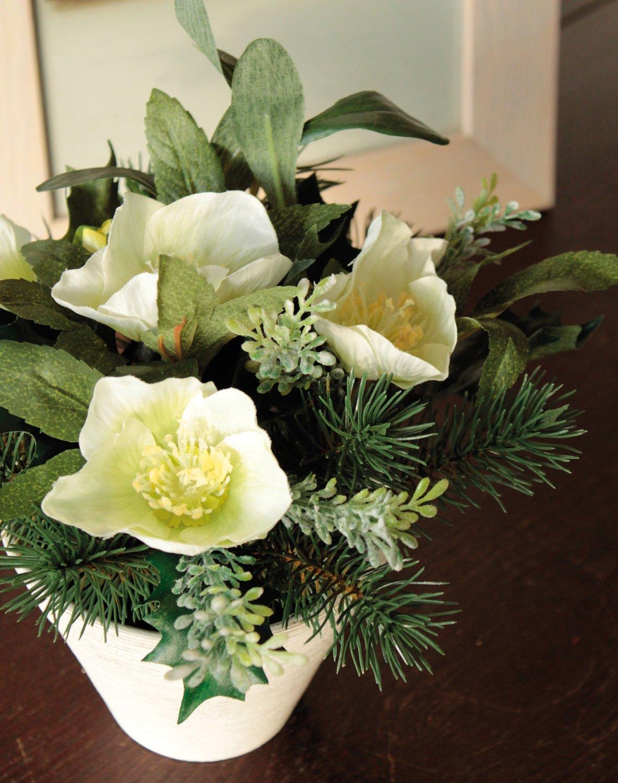 Künstliche Christrosen im Topf, mit Tanne, 20 cm, creme-weiß