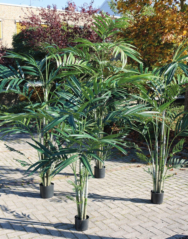 Künstliche Kentia-Palme, getopft, 210 cm, grün