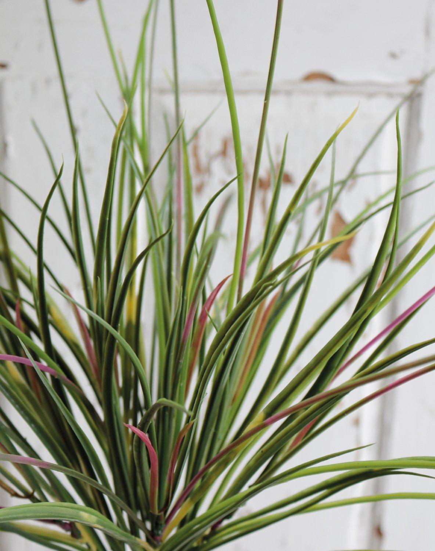 Künstlicher Grasbusch, 53 cm, grün