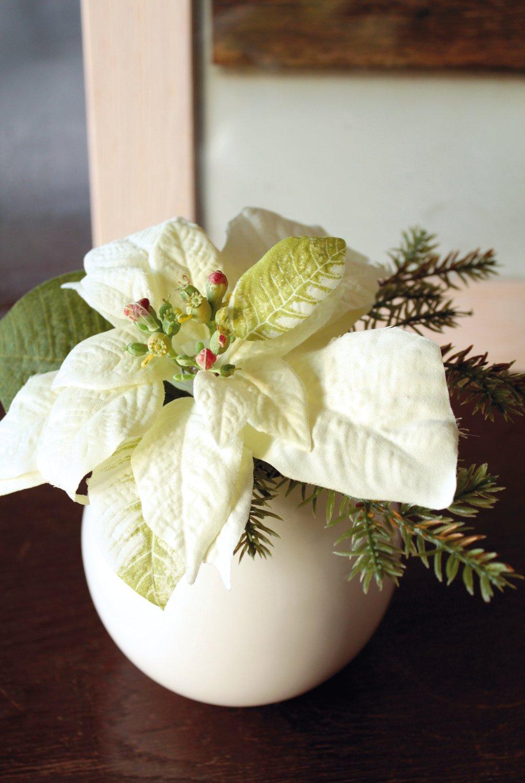 Künstliche Poinsettia mit Tanne in weißem Keramiktopf, 14 cm, creme-weiß