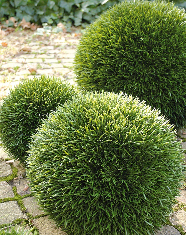 Künstliche Graskugel aus Kunststoff, Ø 43 cm, grün