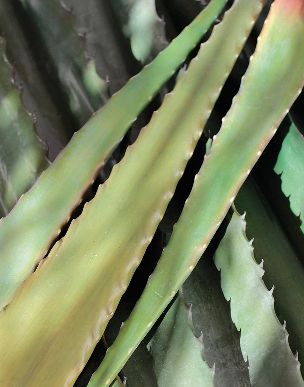 Künstliche Aloe Vera Blatt, 48 cm, grün