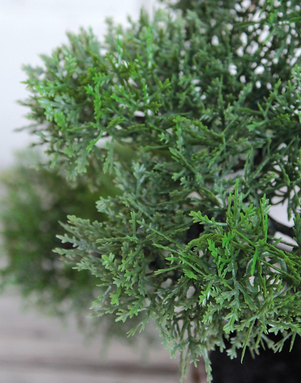 Künstliche Bonsai-Konifere in Keramiktopf, 36 cm, grün