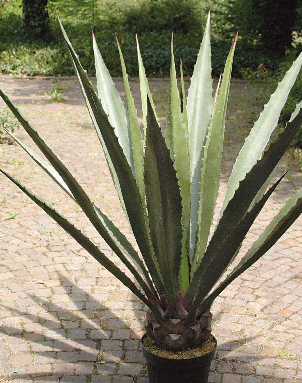 Künstliche Agave, getopft, 21 Blätter, 120 cm, grün-grau