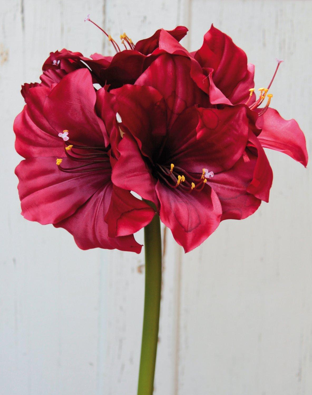 Künstliche Amaryllis, 71 cm, rot