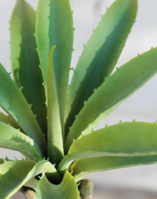 Künstliche Agave auf Steckstab, 24 cm, Ø 26 cm, grün