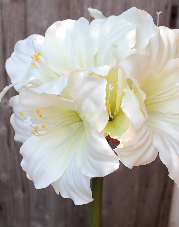 Künstliche Amaryllis, 71 cm, weiß