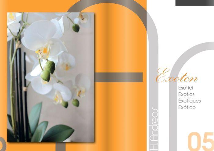 Kunstpflanzen Katalog 2020 - Exoten von H.Andreas
