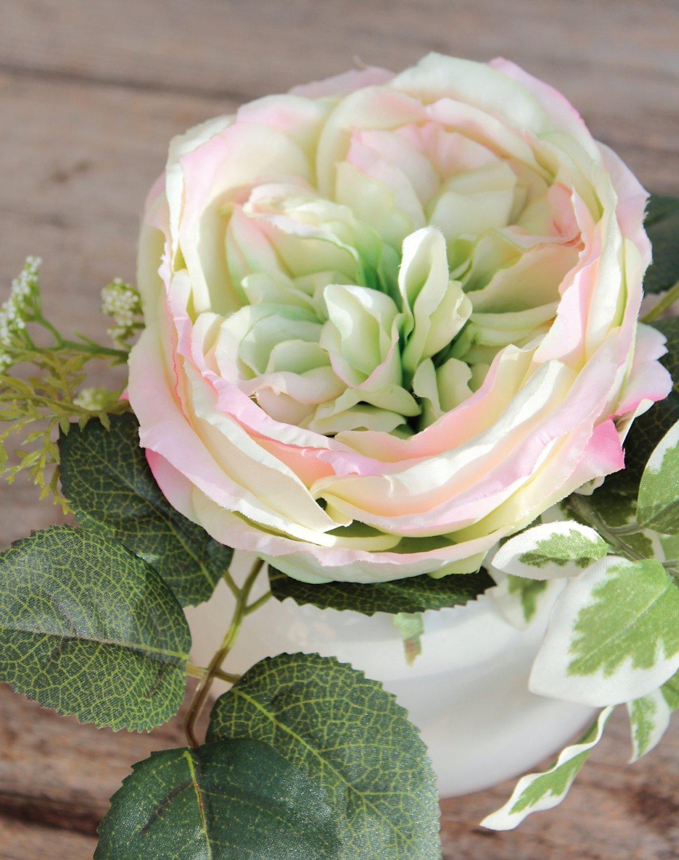 Künstliche Rose in Keramiktopf, 17 cm, grün-rosa