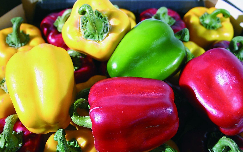 Künstliche Paprika, 9 cm, grün
