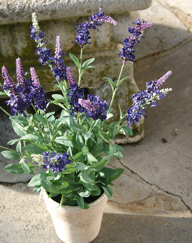 Künstlicher Lavendelbusch, getopft, 48 cm, dunkelviolett