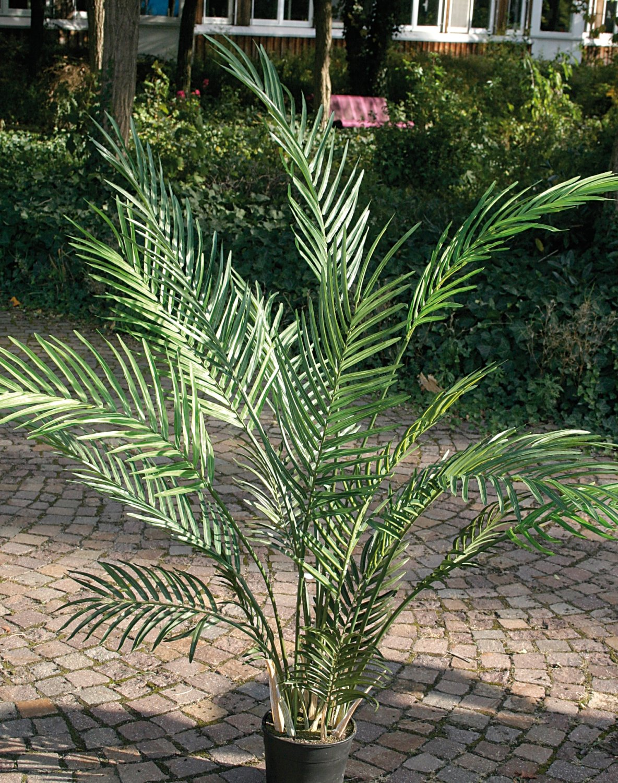 Künstliche Arecapalme, getopft, 120 cm, grün
