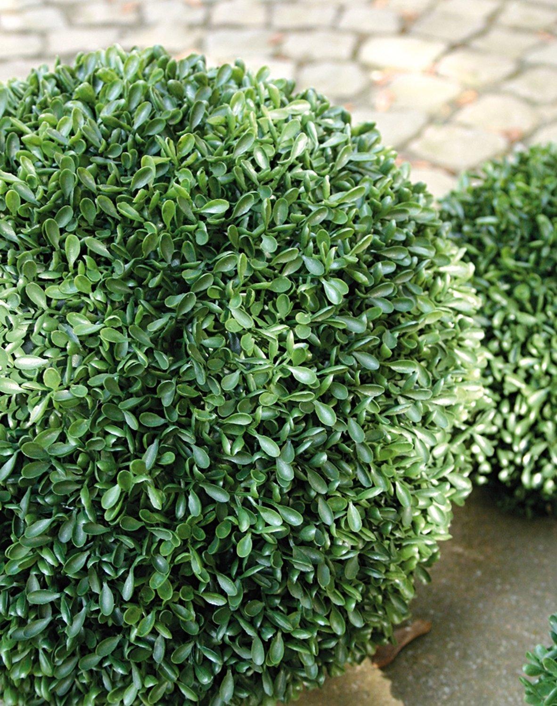 Künstliche Buchsbaumkugel aus Kunststoff, Ø 43 cm, grün