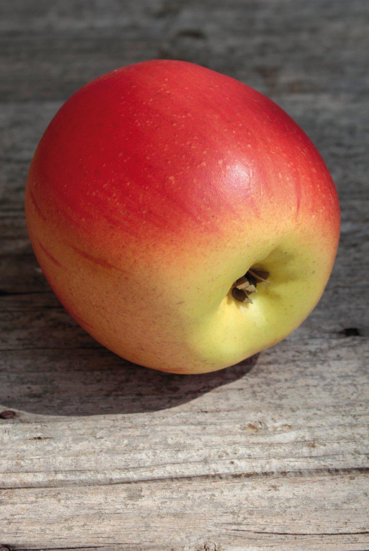Künstlicher Apfel, 8 cm, rot-gelb