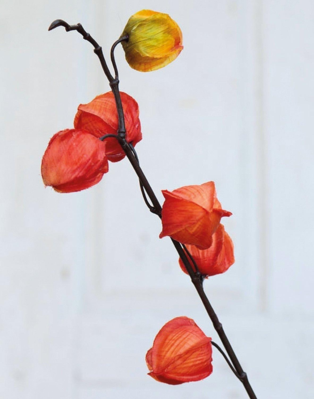 Künstliche Physalis, 11 Früchte, 95 cm, orange