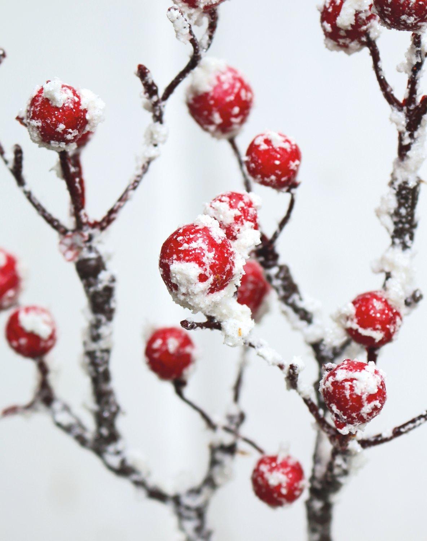 Künstlicher Beerenzweig mit Schnee, 33 cm, rot-weiß
