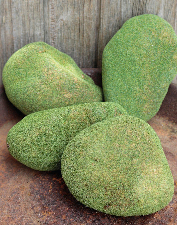 Deko Moossteine, 4 Stück im Beutel, 10 cm, grün-braun